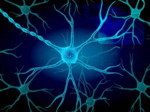 Rigenerazione cellulare? Oggi è possibile gestirla e trarne i benefici.